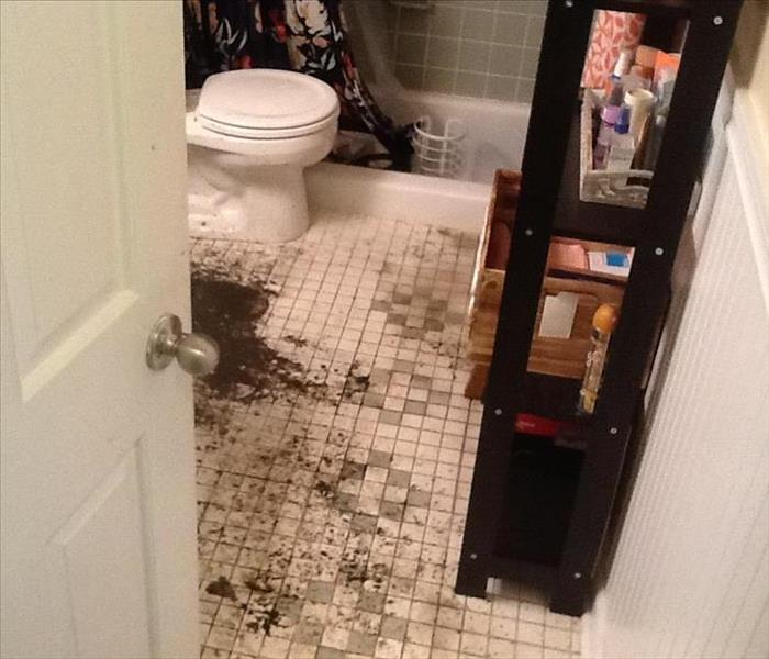 Water Damage How To Respond to Sewer Backups