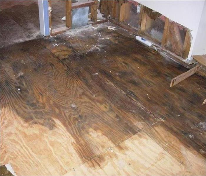 Wooden floor wet