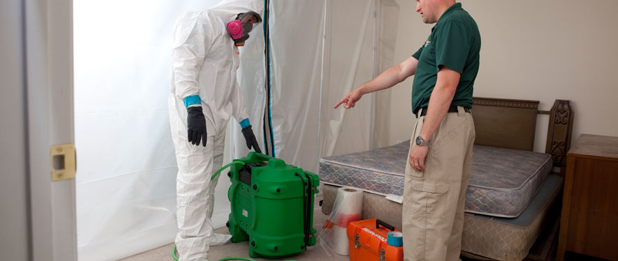 Newtown, PA mold removal process